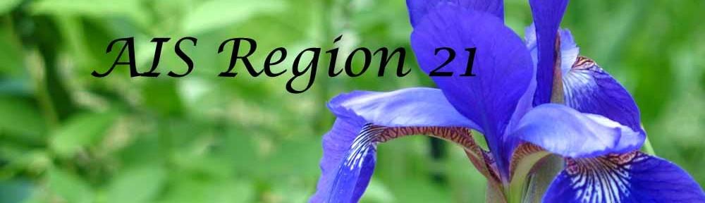 AIS Region 21